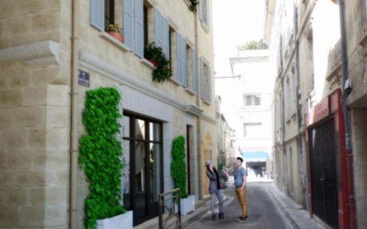 malraux-avignon-25-rue-du-chapeau-rouge-avignon-84-713
